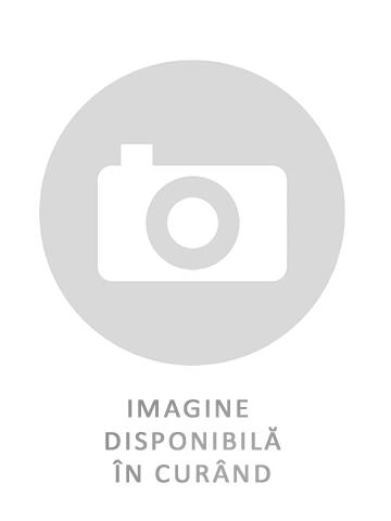 Anvelope IARNA AUSTONE SP9 195/65 R15 91 H